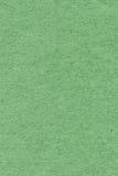 Ricicli il campione leggero di carta di struttura di lerciume di Kelly Green Extra Coarse Grain Fotografia Stock Libera da Diritti