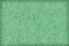 Ricicli il campione leggero di carta di struttura di lerciume di scenetta di Kelly Green Extra Coarse Grain Immagini Stock