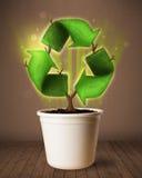 Ricicli il segno che cresce dal vaso da fiori Immagine Stock Libera da Diritti