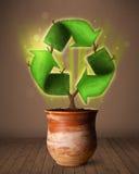 Ricicli il segno che cresce dal vaso da fiori Fotografie Stock Libere da Diritti