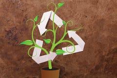 Ricicli il simbolo con la pianta su priorità bassa di carta Fotografia Stock Libera da Diritti