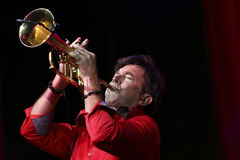 Rick Braun. Performing in concert Stock Images