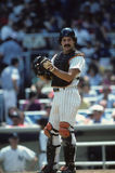 Rick Cerone. New York Yankees catcher Rick Cerone. (Image taken from color slide Royalty Free Stock Photography