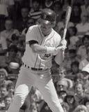 Rick Leach, Detroit Tigers Fotos de Stock Royalty Free