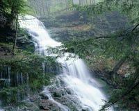 Rickett's Glen State Park Waterfall Royalty Free Stock Photo