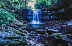 Ricketts Glen harbors Glens Natural Area Royalty Free Stock Photography