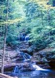 Ricketts Glen harbors Glens Natural Area Royalty Free Stock Photos
