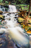 Ricketts Glen harbors Glens Natural Area Stock Images