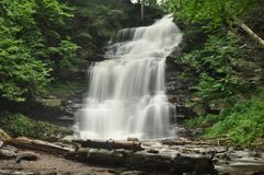 Ricketts Glen State Park Waterfall Royalty Free Stock Images