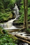 Ricketts Glen State Park Waterfall Royalty Free Stock Photos