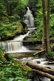 Ricketts Glen State Park Waterfall Royalty Free Stock Photos