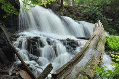 Ricketts Glen State Park Waterfall Royalty Free Stock Photography