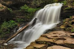 Ricketts Glen State Park Waterfall Stock Images