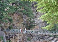 Rickety mountain  bridge over deep gorge. Rickety mountain bridge over gorge, himalayas india Royalty Free Stock Photos