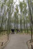 Rickshaw inside the bamboo forest of Arashiyama, Kyoto, Japan stock images