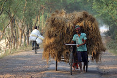 Rickshaw rider transports rice from the farm home Royalty Free Stock Photos