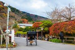 Rickshaw riding at Arashiyama in autumn. Rickshaw riding to see autumn colors at Arashiyama, Kyoto, Japan Royalty Free Stock Images