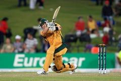 Ricky庞廷澳大利亚人板球运动员 图库摄影