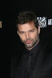 Ricky Martin Obrazy Stock