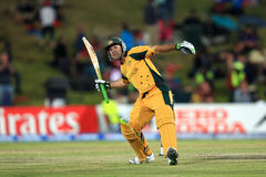 Ricky Ponting celebrates on his century Stock Image