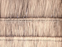 Ricopra di paglia il fondo del fondo, del fieno o dell'erba asciutta del tetto Fotografia Stock