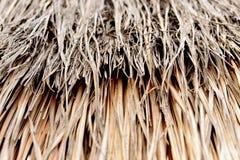 Ricopra di paglia il fondo del tetto in Tailandia Immagine Stock