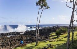 Ricopra la linea costiera mechant, la La Reunion Island, Francia Immagine Stock