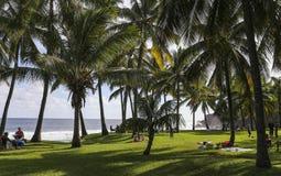 Ricopra la linea costiera mechant, la La Reunion Island, Francia Fotografia Stock