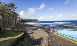 Ricopra la linea costiera mechant, la La Reunion Island, Francia Fotografie Stock Libere da Diritti