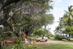 Ricopra la linea costiera mechant, la La Reunion Island, Francia Immagine Stock Libera da Diritti