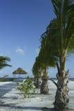 Ricorso di Belize Fotografia Stock Libera da Diritti