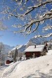 Ricorso di corsa con gli sci svizzero famoso Braunwald Immagini Stock