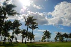 Ricorso tropicale mauritius Immagine Stock