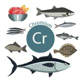 Ricos de la comida con cromo Un sistema de comidas orgánicas orgánicas con un alto contenido mineral stock de ilustración