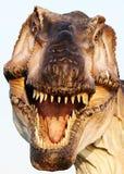 Ricostruzione indicativa del rex di tirannosauro Fotografia Stock Libera da Diritti