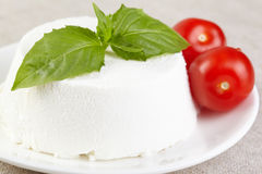 Ricotta Royalty Free Stock Images