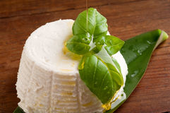 Ricotta and basil Royalty Free Stock Photography