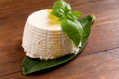 Ricotta and basil Stock Photography