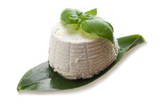 Ricotta and basil on white Stock Photography