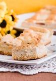 Ricotta Cake. Stock Image