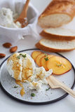 Ricotta cheese appetiser with honey and fruit Stock Photos