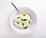 Ricotta Cheese with Fresh Mint Stock Image