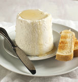 Ricotta cheese with honey and toasts Stock Photography