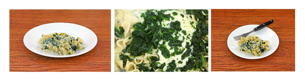 Ricotta Cheese Spinach Pasta Royalty Free Stock Photography