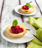 Ricotta Cheese Tartlets with raspberries Stock Photography