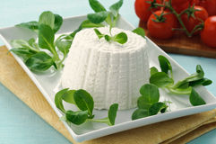 Ricotta cheese and valerian Stock Images