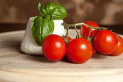 Ricotta con los tomates Fotos de archivo libres de regalías