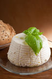Ricotta on dish Royalty Free Stock Image