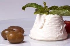 Ricotta e azeitonas italianos do queijo fotos de stock royalty free