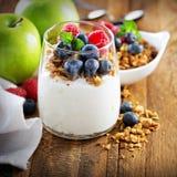 Ricotta e parfait del yogurt con granola immagine stock